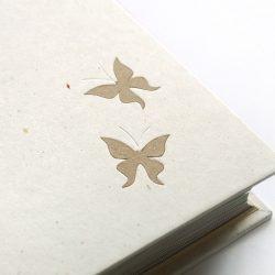 album Okroví motýli
