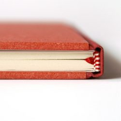 Deník malého kůzlátka