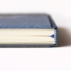 Deník miminka Čáp