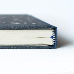 Deník miminka Rak