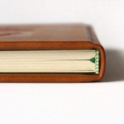 Sklepní deník