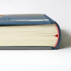 Deník Liščí rodinka