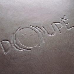 kronika Doupě