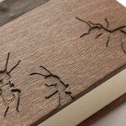 denní diář Mravenci