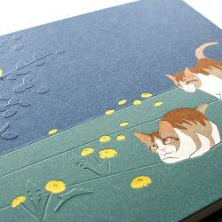 album Zelené kočičky