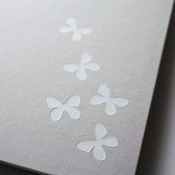 album Šedí motýli