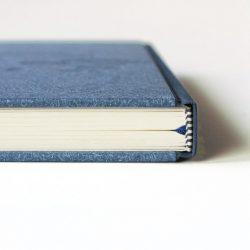 Deník miminka Čápi