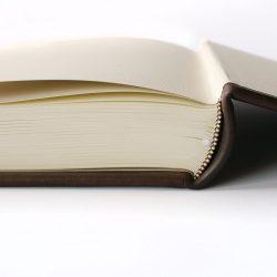 Rodová kniha